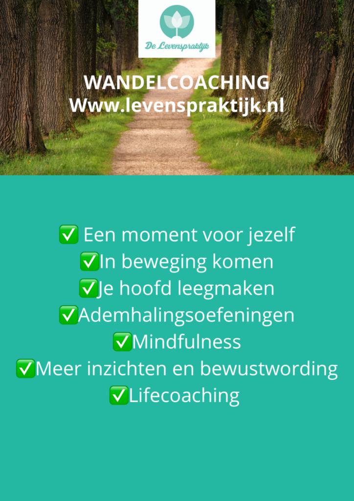 Wandelcoaching (met gratis kennismakingsaudio)